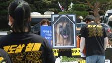 جنازة وهمية لكلب بكوريا الجنوبية للتنديد بتناول لحم الكلاب