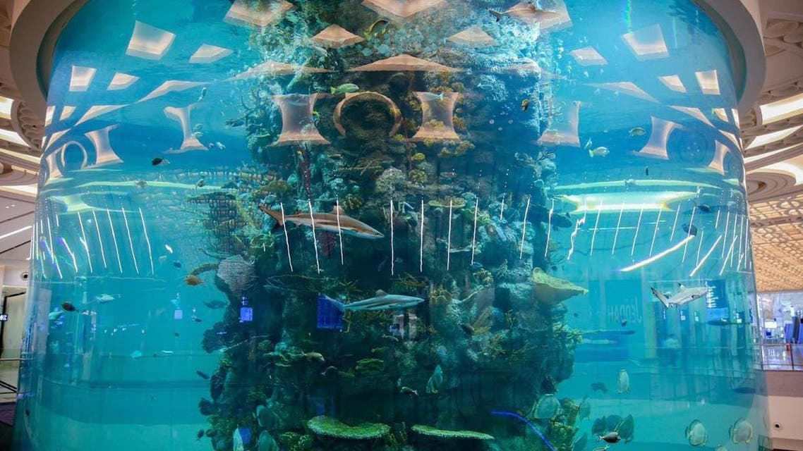 KSA: Jeddah airport Fish Tank