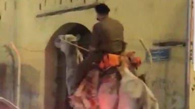 """فيديو مثير للجدل في مكة.. """"امتطى جملاً بزي عسكري"""""""