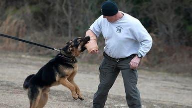 الجيش الأميركي يستخدم أكمام سليكون لتدريب أكثر واقعية على العض