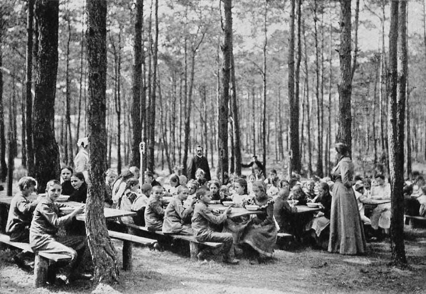 صورة لفصل دراسي بإحدى الغابات