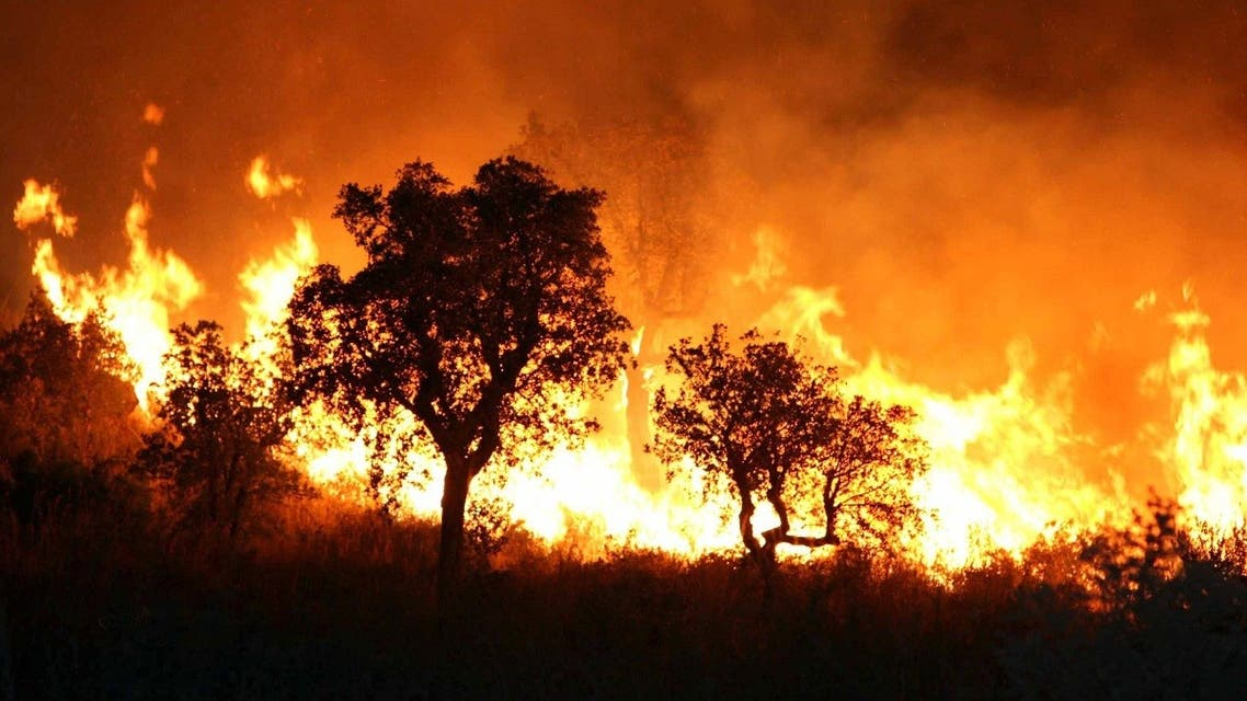 A fire burns late 01 September 2007 night in Tzarift, near Tlemcen, north-west of Algeria. (AFP)