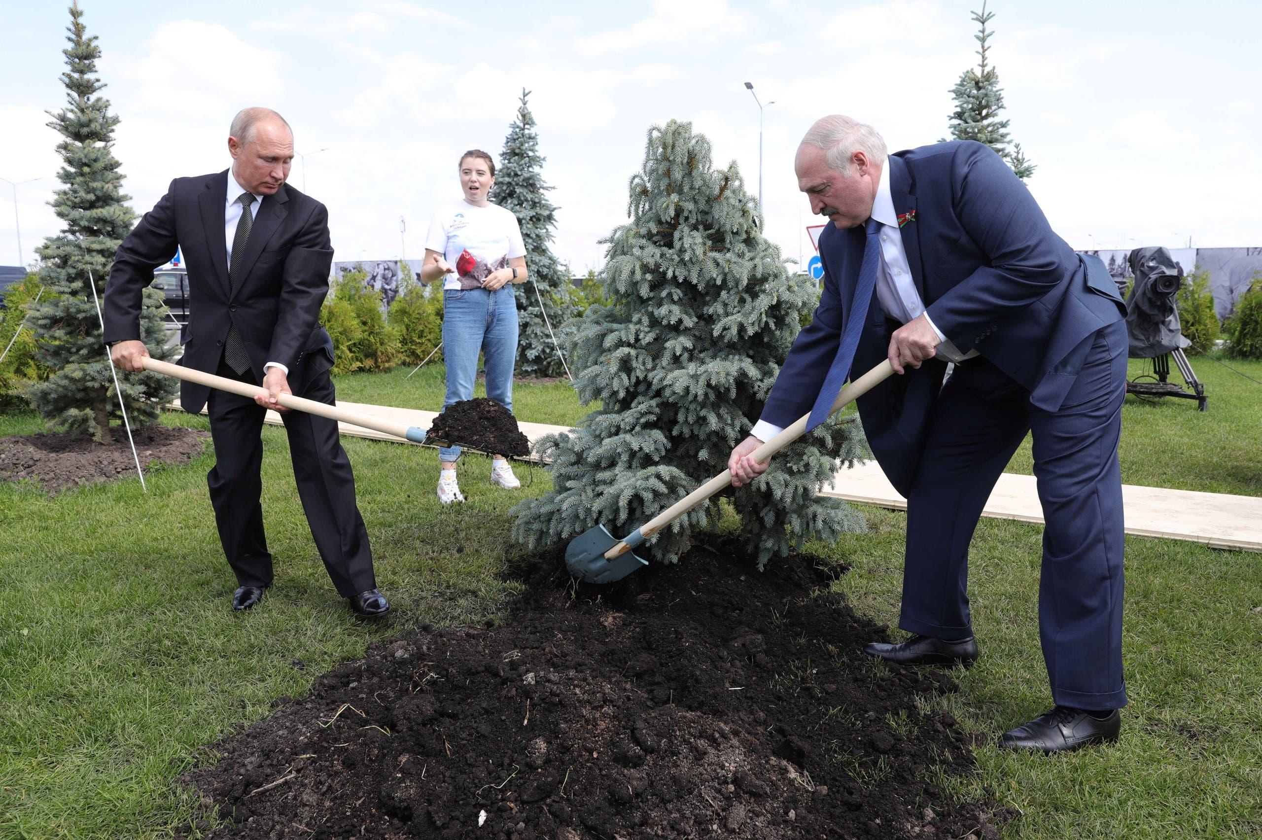 رئيسا روسيا وروسيا البيضاء يزرعان شجرة خلال إحياء ذكرى الحرب العالمية الثانية في روسيا نهاية يونيو الماضي