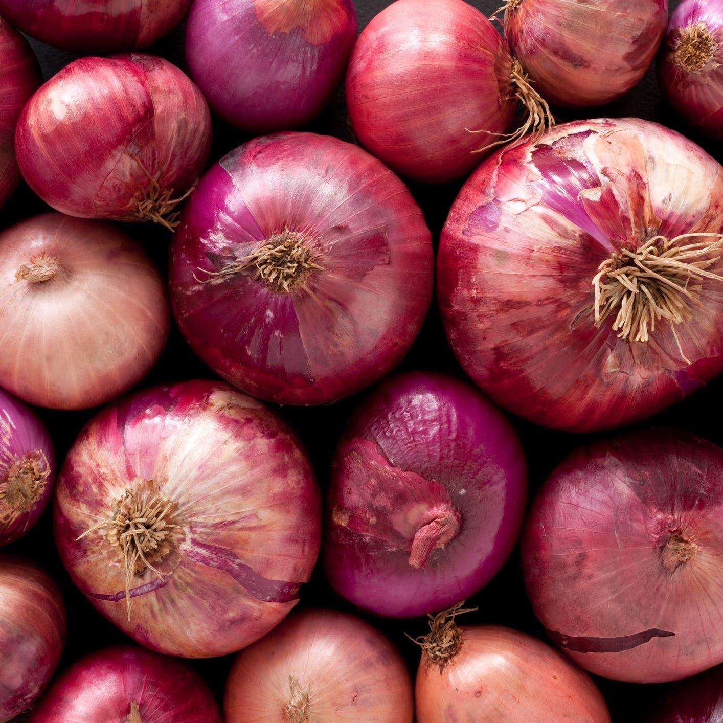 السالمونيلا تجتاح ولايات أميركية.. ما علاقة البصل الأحمر؟