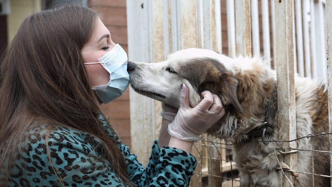 A woman hugs a dog at an animal shelter in Moscow. (Reuters)