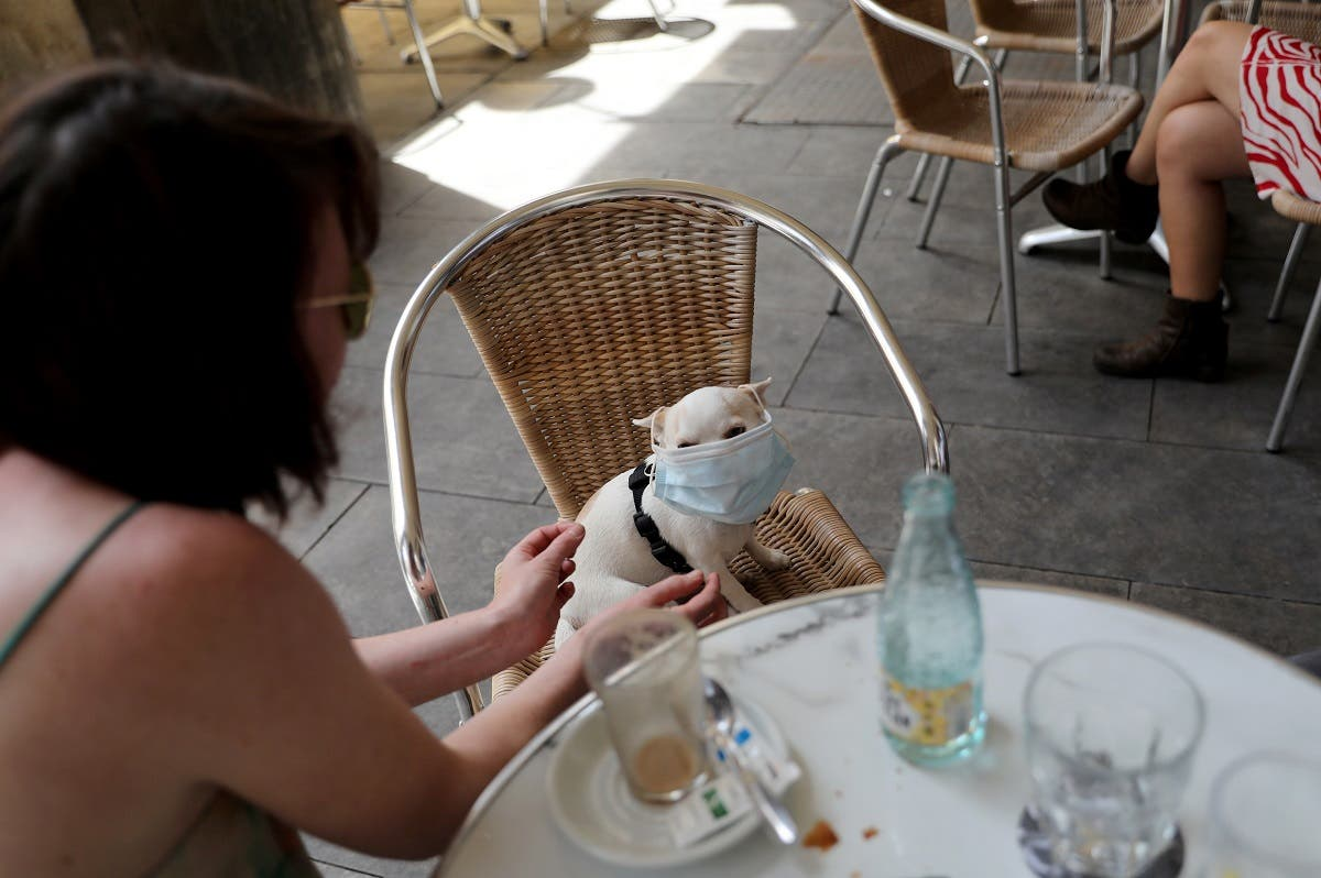 A woman puts a protective mask on a dog as she sits at an outdoor seating section of a restaurant. (Reuters)