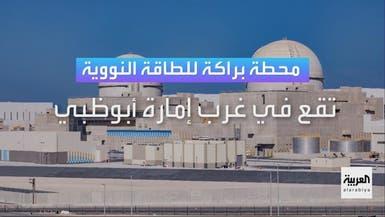 """8 حقائق عن محطة """"براكة"""" للطاقة النووية"""