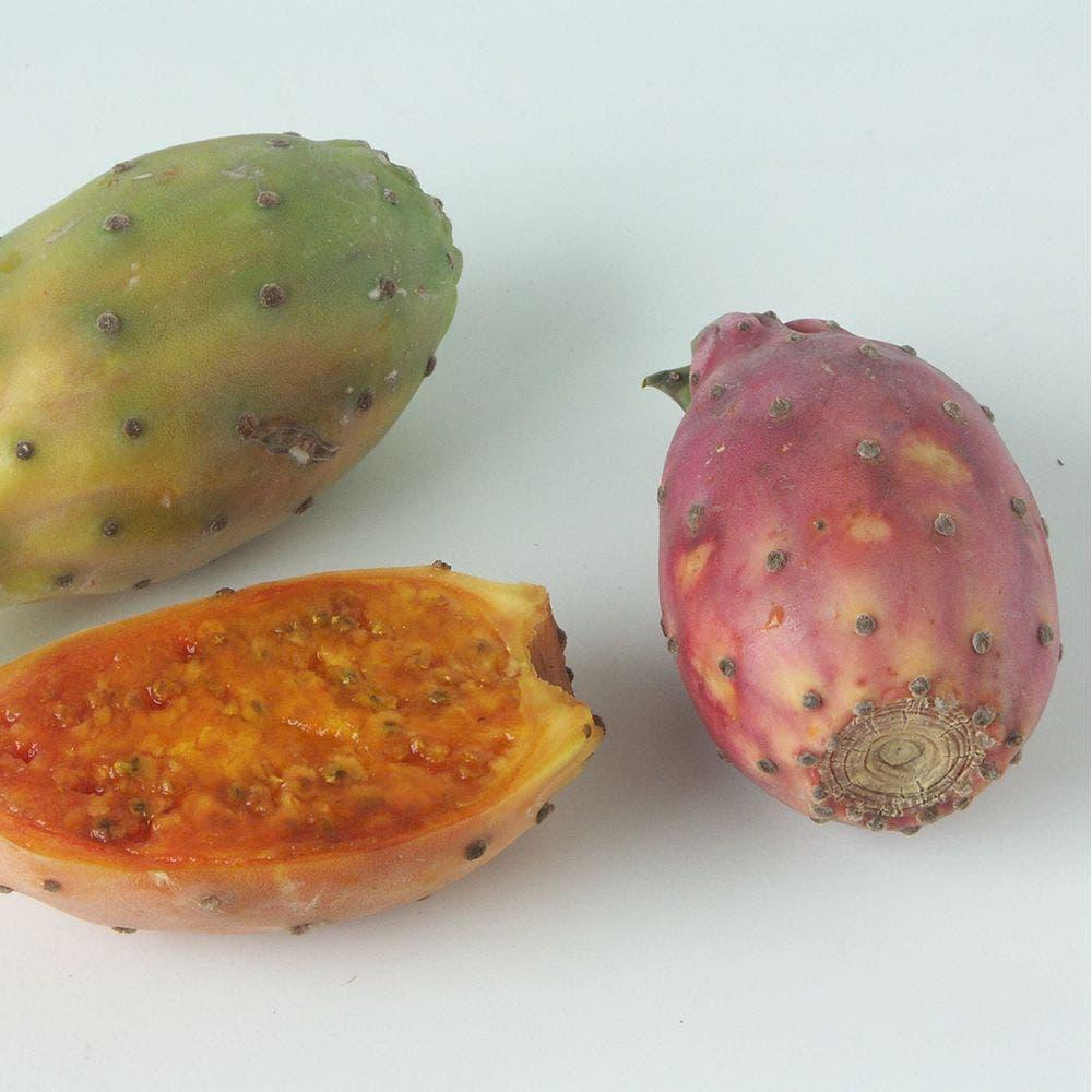 ثمار التين الشوكي