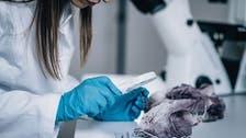 اكتشاف علمي جديد سيغير مسار البحث الجنائي والطب الشرعي