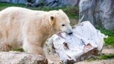 Polar bear kills man on Norway's islands