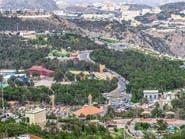 بالسعودية.. غابات عمرها مئات السنين على ارتفاع 1700 متر