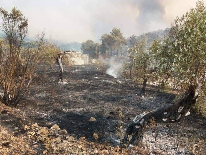 حرق أعشاب أرضه فأضرم النيران بـ 300 ألف متر مربع!