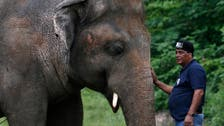 'World's loneliest elephant' will leave Pakistani zoo to start new life
