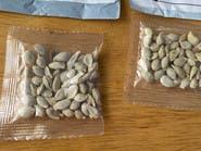 حرب النباتات.. أمازون تمنع بيع البذور الأجنبية