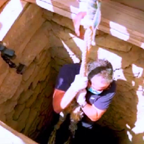 وزير يظهر في فيديو وهو ينزل بحبل إلى كنز في بئر مصرية