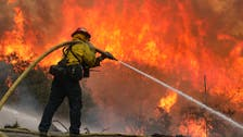 Gender reveal firework party triggers massive California fire