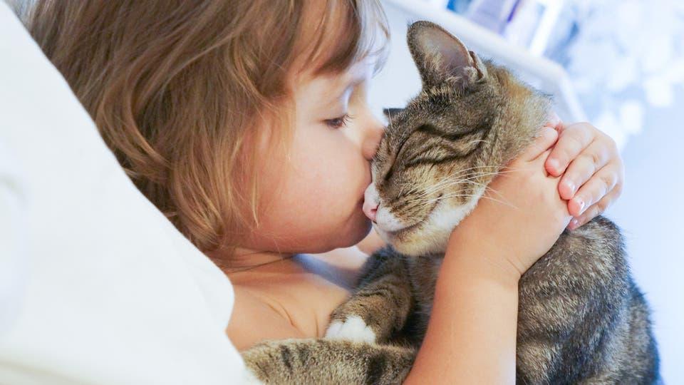 أطفال التوحد يفضلون القطط على الكلاب