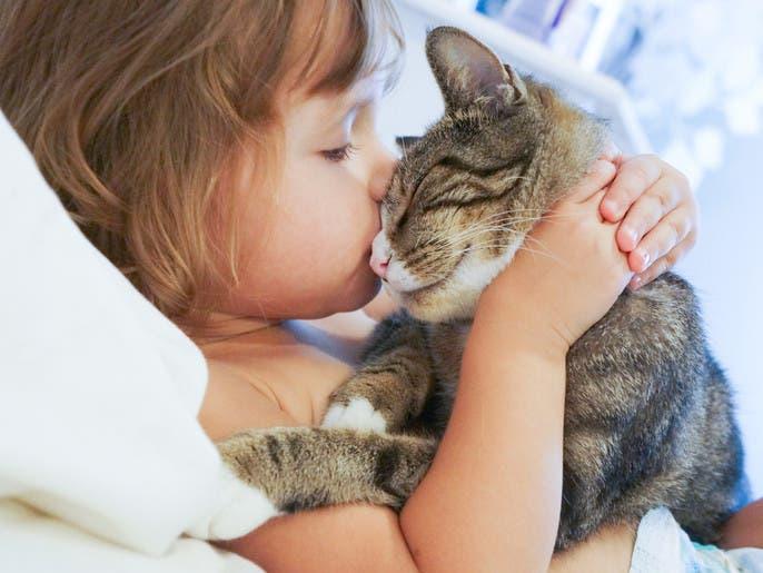 أطفال التوحد يفضلون القطط على الكلاب.. العلم يوضح