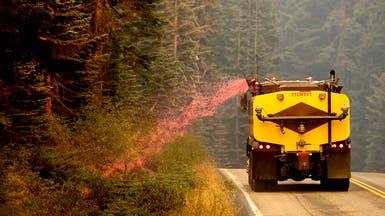 حرائق الغابات تقتحم السباق الرئاسي.. وبايدن يتهم ترمب
