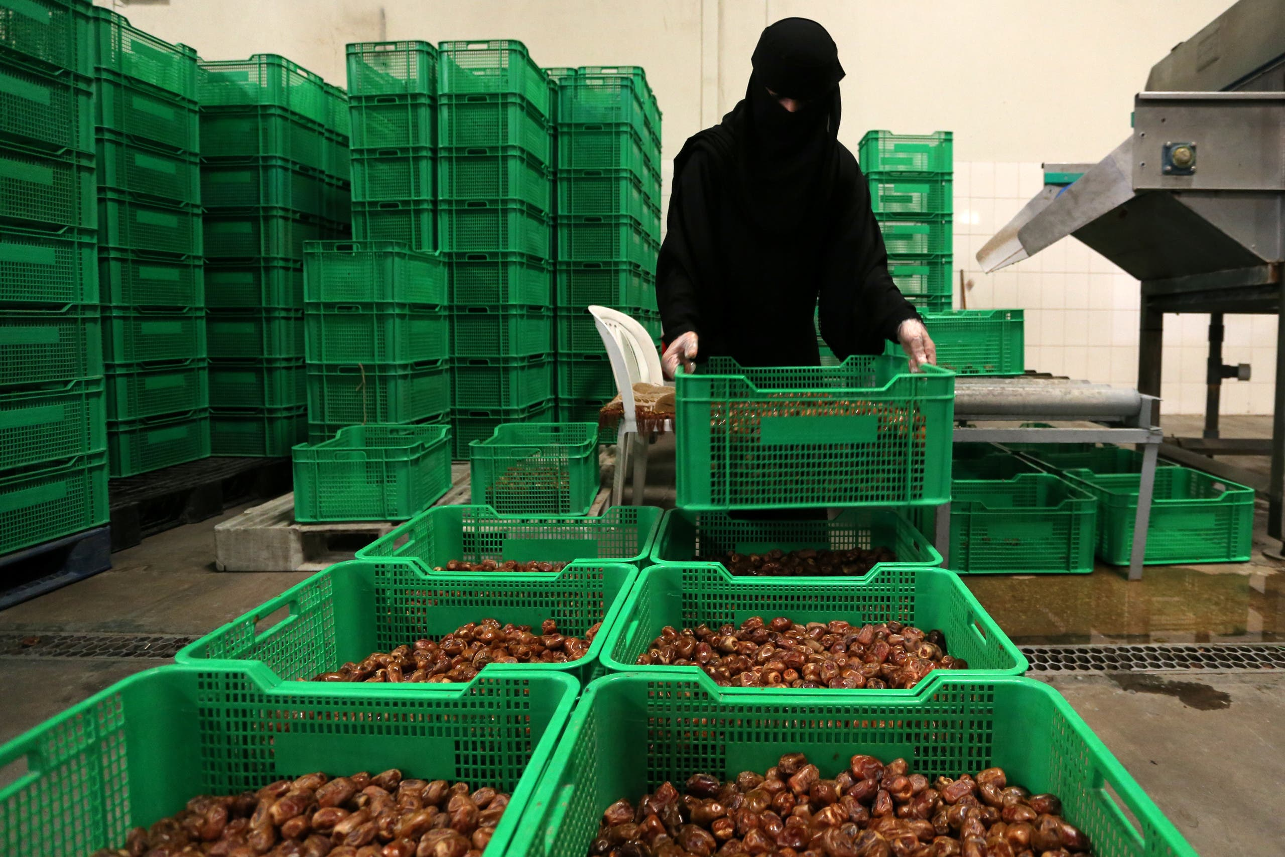 A Saudi woman works at a dates packaging factory in Al-Ahsa, Saudi Arabia. (Reuters)