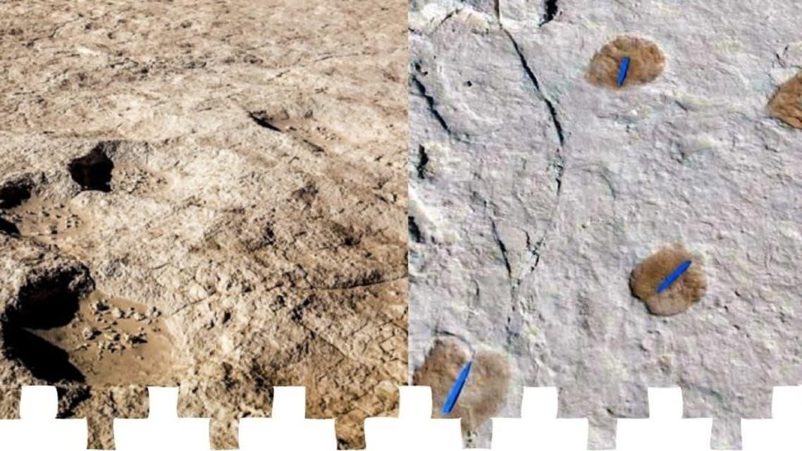 KSA footprints found (Twitter: @MOCHeritage)
