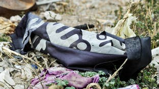 مقتل 12 عنصر من قوات النظام بمعارك مع داعش في البادية