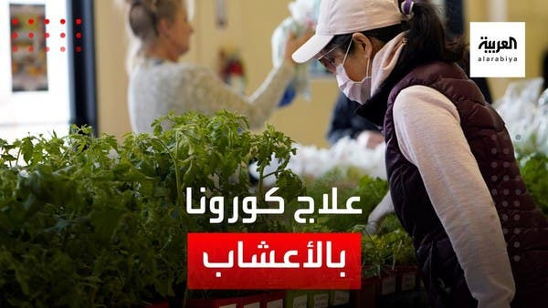 الصحة العالمية تجرب الأعشاب لعلاج كورونا