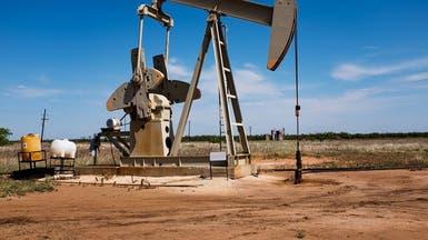 وزير الطاقة الإماراتي: سوق النفط ستبدأ التعافي هذا العام