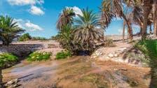 سعودی عرب میں ریت کے ٹیلوں پر پانی کے چشموں کے منفرد مناظر