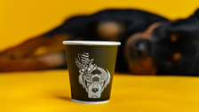 First dog cafe opens in Saudi Arabia's Khobar