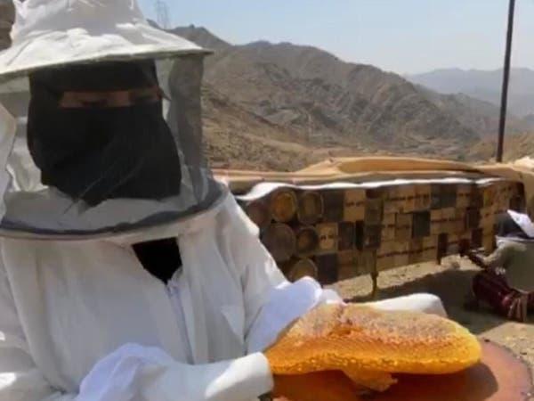 أول نحالة سعودية تنتج العسل الطبيعي من رجال ألمع