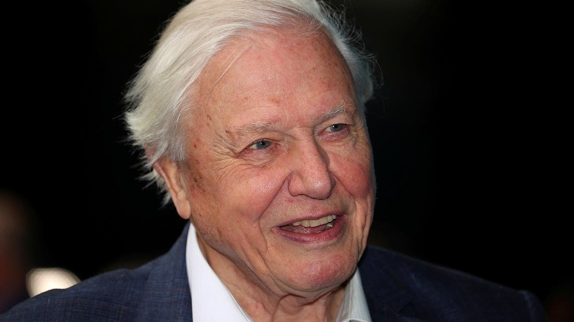 British broadcaster David Attenborough. (File photo: Reuters)1096699667_RC288J9CGQDD_RTRMADP_3_MALTA-BRITAIN-ROYALS-ATTENBOROUGH