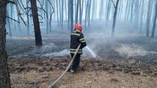 Four killed, 10 hospitalized in forest fires in eastern Ukraine