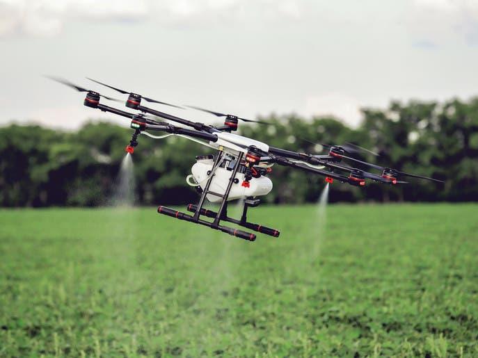 روبوتات صغيرة تطلق الثورة الزراعية الخضراء!