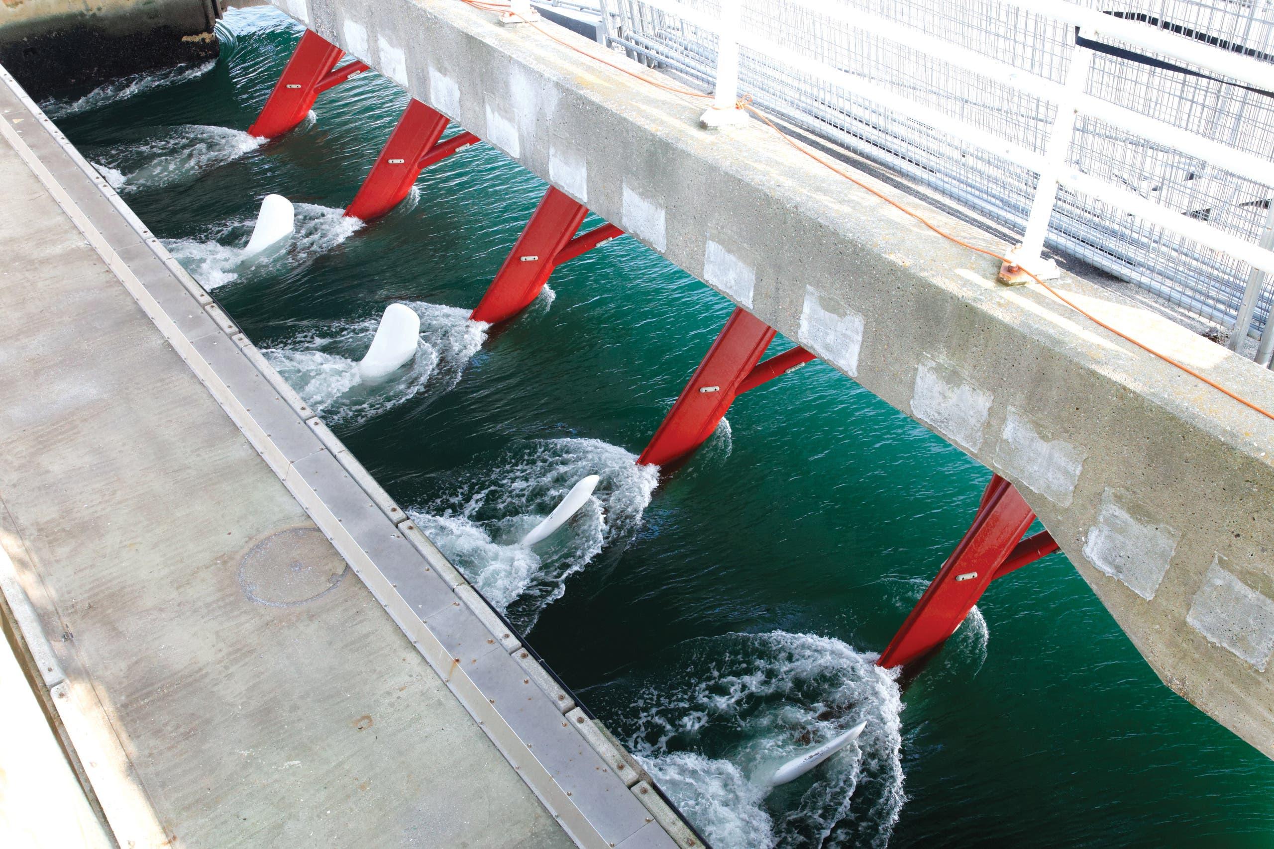 توربينات تُستخدم لاستخراج الطاقة من تيار المد والجزر