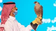 سعودی عرب: باز کی نیلامی میں سخت مقابلہ، 3 لاکھ 66 ہزار ریال میں بازوں کی فروخت