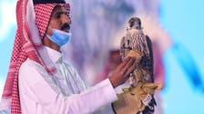 سعودی عرب میں بازوں کی خریدو فروخت جاری، مزید ایک ملین ریال کے شاہین نیلام