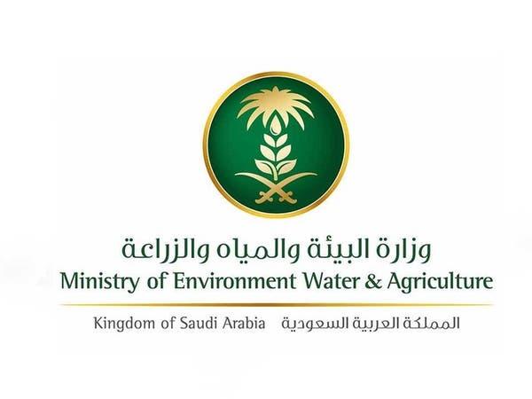 قيمة غرامات صيد الحيوانات البرية في السعودية