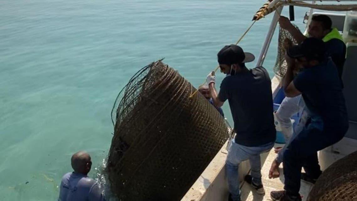 شباك صيد في السعودية