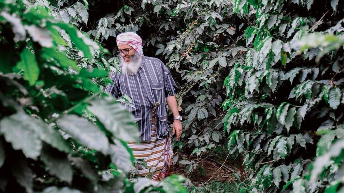KSA: Coffee farming