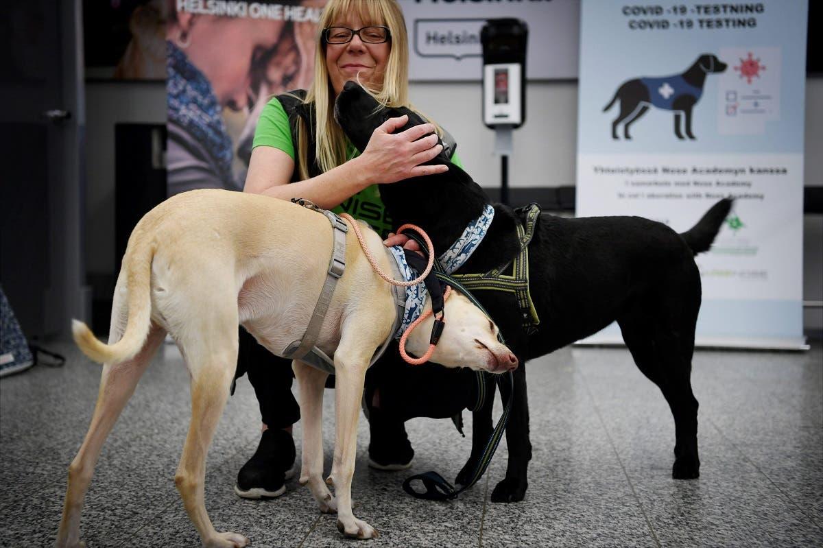 The coronavirus sniffer dogs named Kossi (L) and Miina cuddle with trainer Susanna Paavilainen at the Helsinki airport in Vantaa, Finland, September 22, 2020. (Antti Aimo-Koivisto/Lehtikuva/AFP)