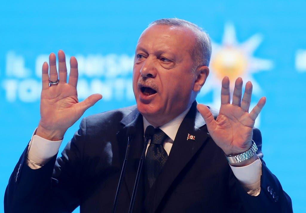 الرئيس التركي رجب طيب أردوغان (أرشيفية - فرانس برس)
