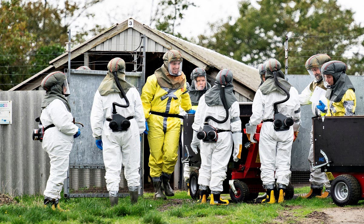 Employees from the Danish Veterinary and Food Administration and the Danish Emergency Management Agency in protective equipment are seen at a mink farm in Gjoel, North Jutland, Denmark October 8, 2020. (Ritzau Scanpix/Henning Bagger via Reuters)
