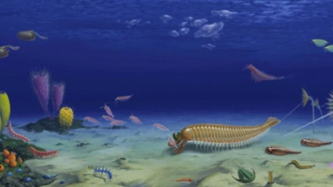فسیل 518 میلیون سالهای که فرگشت بند پایان را توضیح میدهد