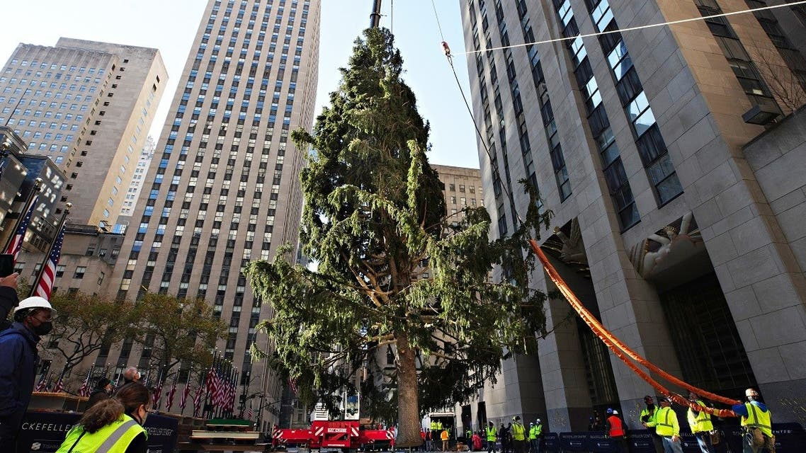 The Rockefeller Center Christmas Tree arrives at Rockefeller Plaza and is craned into place on Nov. 14, 2020 in New York City. (AFP)