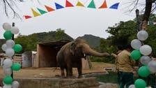 """نجمة غناء شهيرة تزور باكستان لمساعدة """"فيل وحيد"""""""