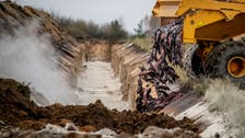 Denmark will dig up millions of minks culled over mutated coronavirus strain