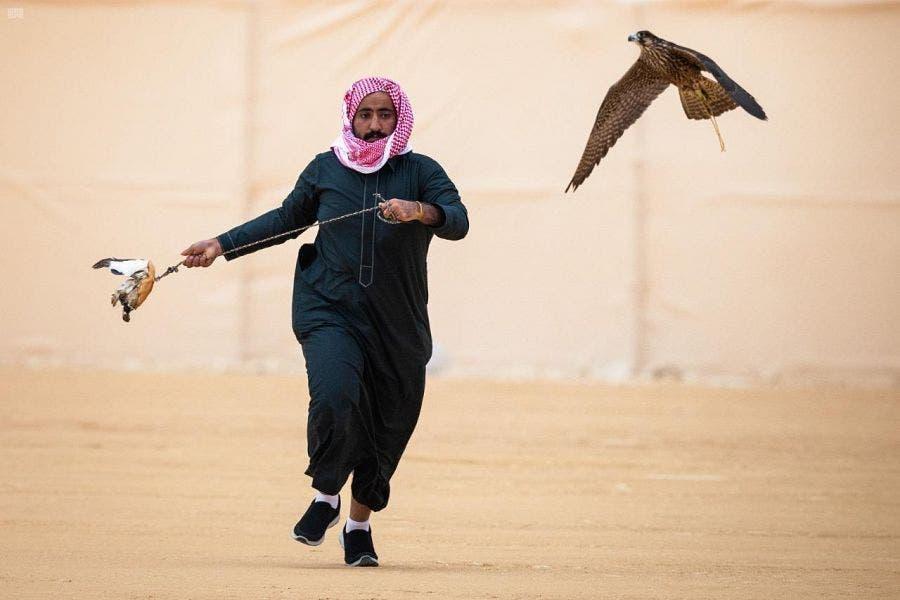 King AbdulAziz Festival Falcon