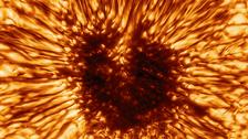 بقعة شمسية شديدة الوضوح قادرة على ابتلاع الأرض!