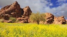 مشاهد رائعة لمتنزه طبيعي شمال السعودية تحيطه جبال ونقوش أثرية